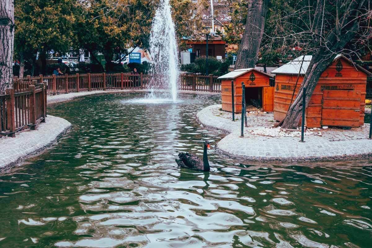 რა ვნახოთ ანკარაში - აღმოაჩინე თურქეთის დედაქალაქი 18