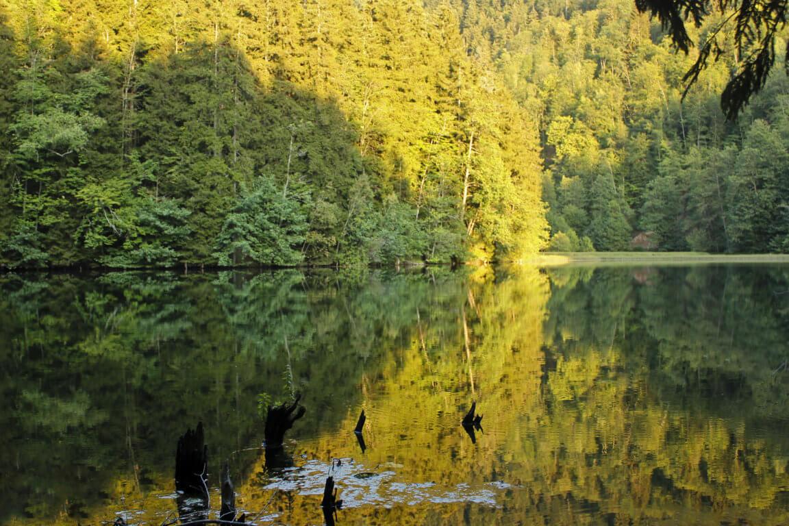 ლამაზი ადგილი საქართველოში