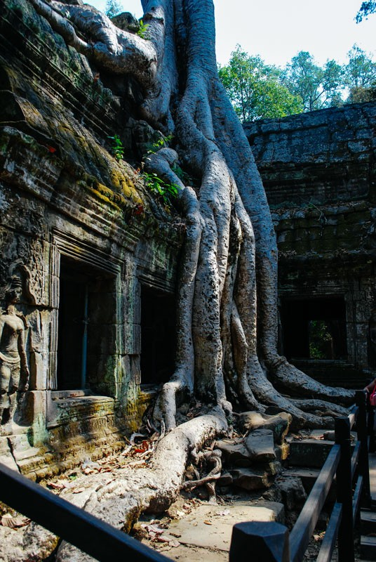 Visiting Angkor Wat - What You Need to Know [2020 Update] 17