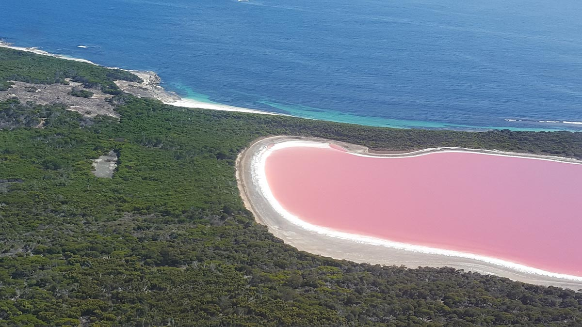 pink lakes in the world